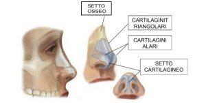 rinosettoplastica